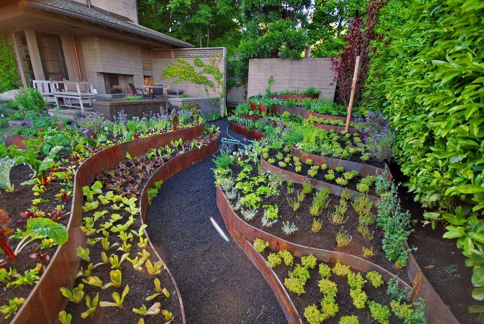 красивый сад для ленивых фото второй половине