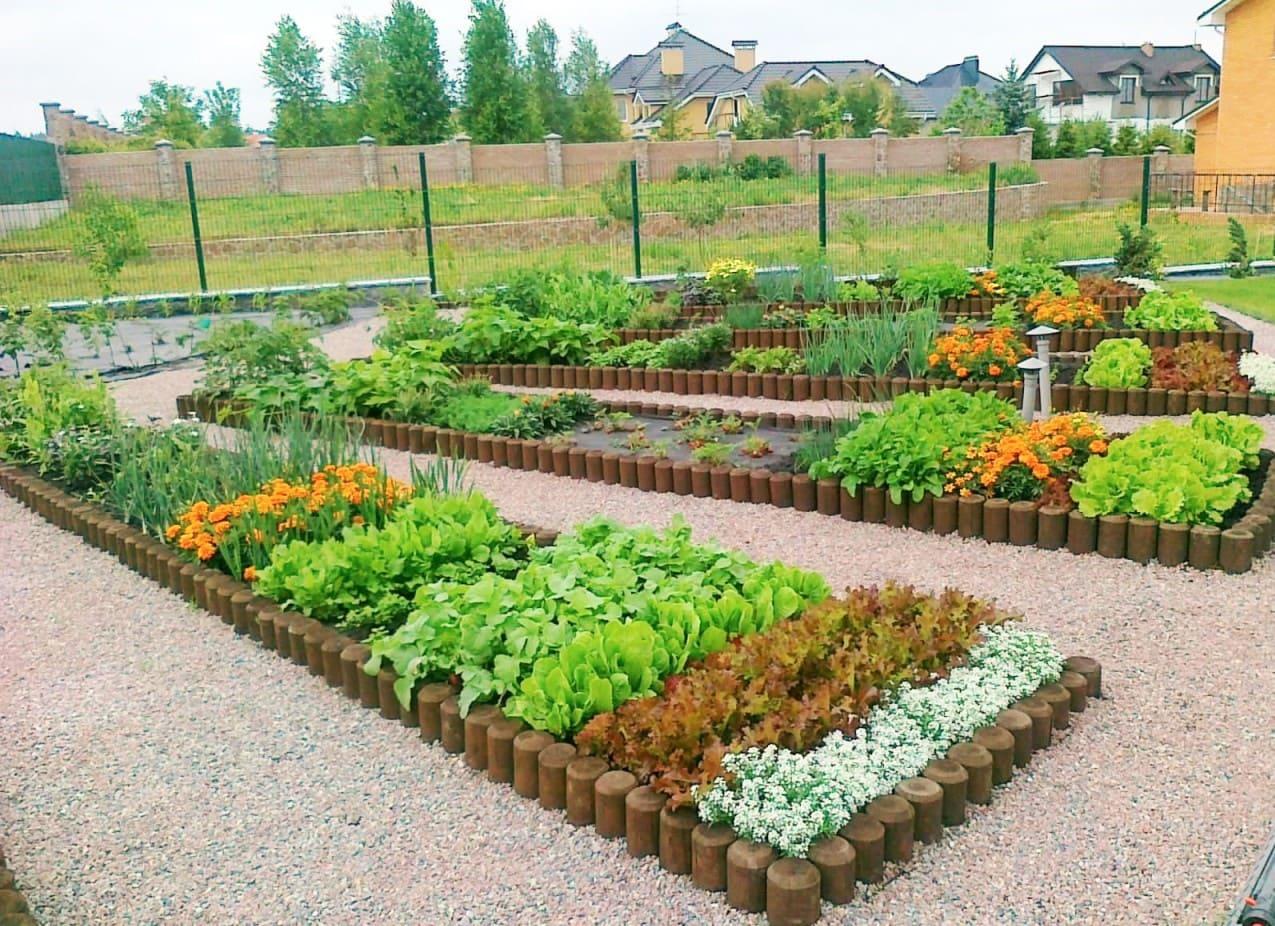 поможет дизайн огорода участка картинки она его просто