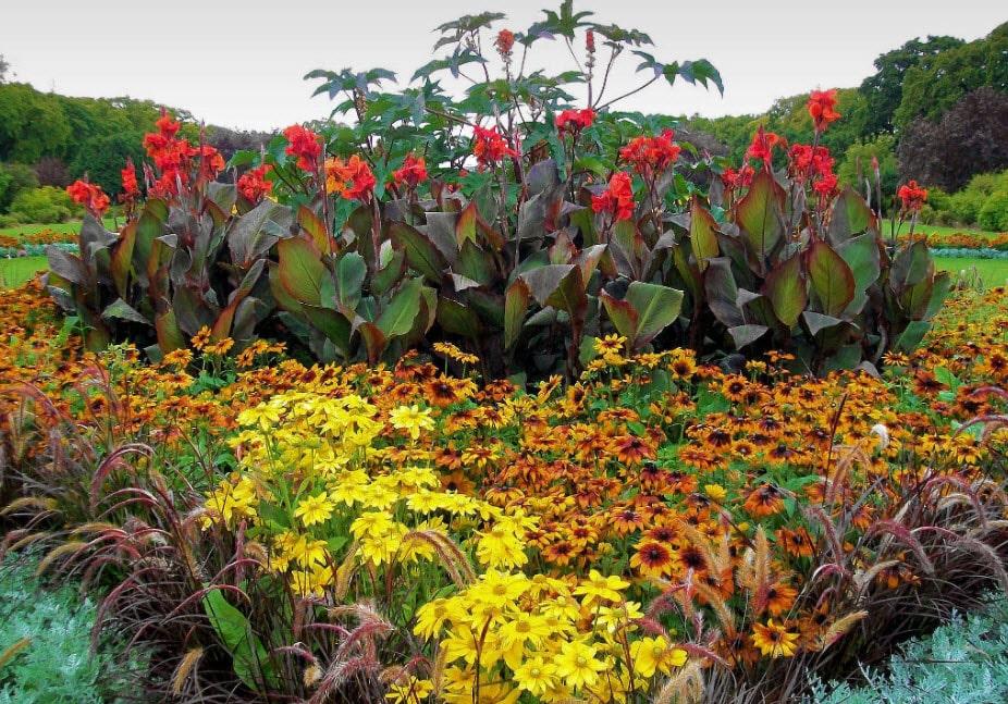 Клумбы на даче своими руками: выбор растений и тонкости оформления цветника