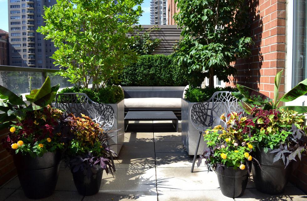 Огород на балконе: 100 лучших идей оформления