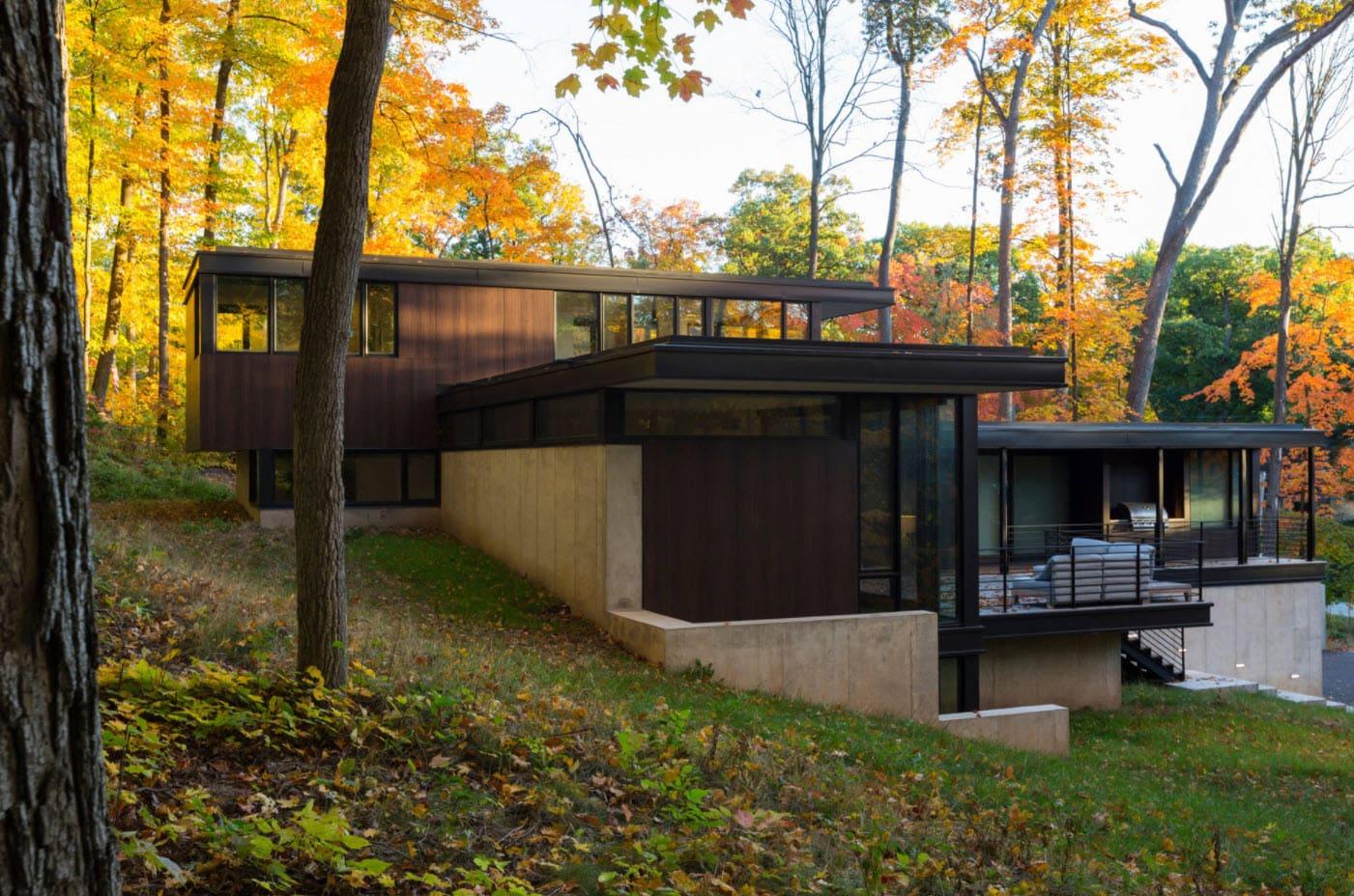 домик в лесу с плоской крышей