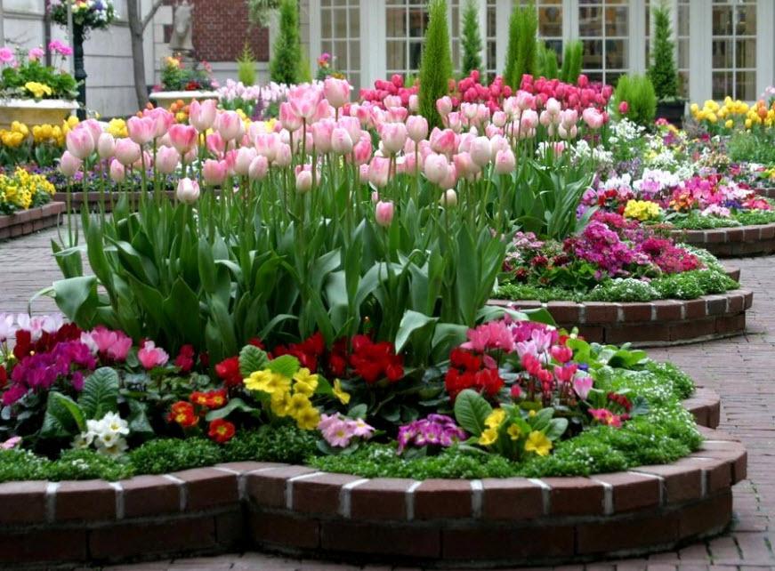 Как правильно сочетать растения на клумбе по цвету?